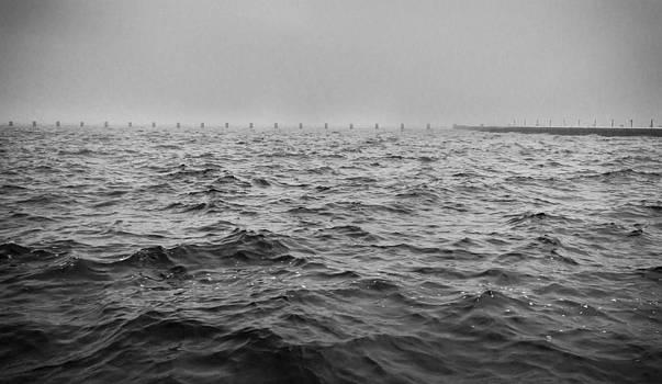 Afternoon Dark Fog by Brad Radle