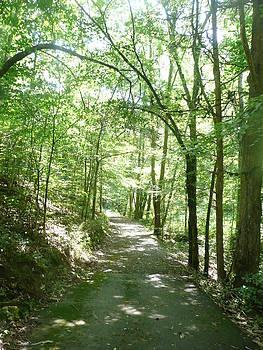 Afternoon Hike by Barb Montanye Meseroll