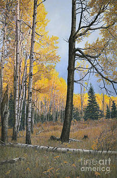 Afternoon in the Aspens by Susan Fraser SCA  B Sc