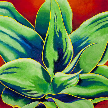 Agave II by Amy McKay