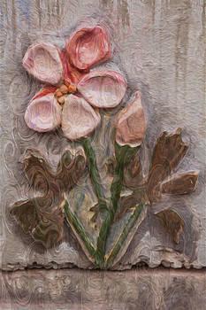 Omaste Witkowski - Aged Pink Beauty