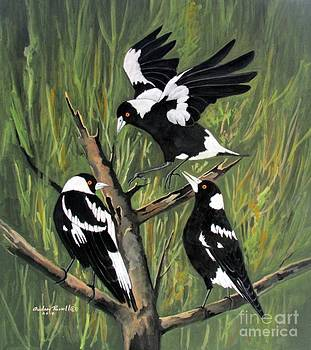 Magpies in the Australian bush by Audrey Russill