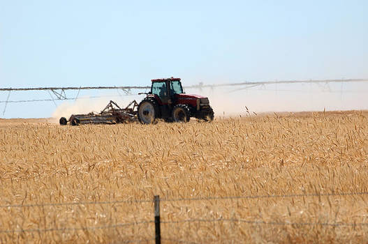 Agriculture in Southern Idaho.  by Rob Huntley