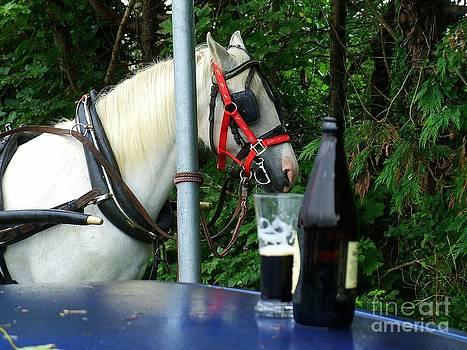 Joe Cashin - Ah for a Guinness