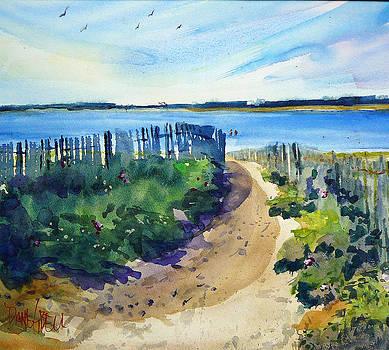 Ah Nantucket by Diane Bell