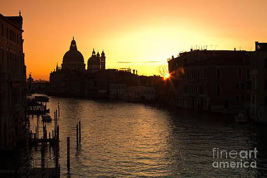 Ah Venice by Tom Hard