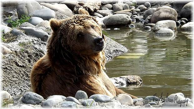 Ahhh Summertime Relaxing by Misty Ann Brewer