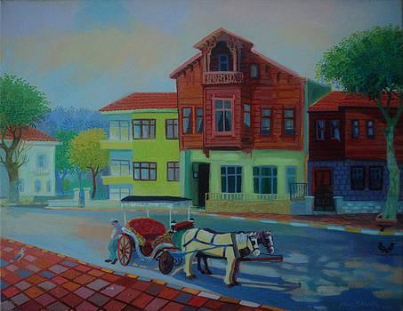 Ahsap Ev by Yavuz Saracoglu