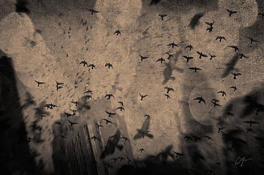 Air Dancing by Eric Ferrar