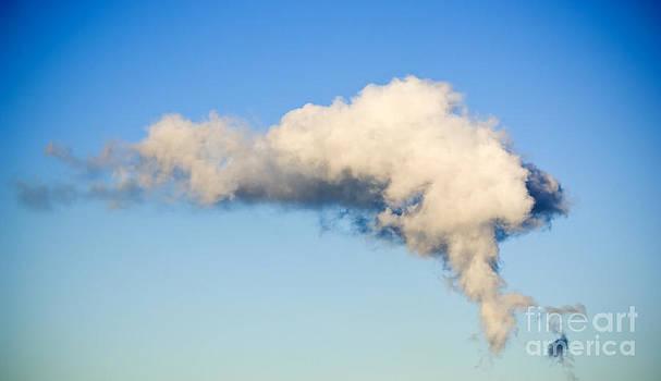 Tim Hester - Air Pollution