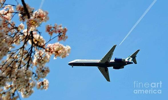 Jost Houk - Air Tran Airlines