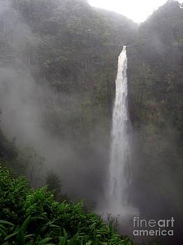 Christine Stack - Akaka Falls