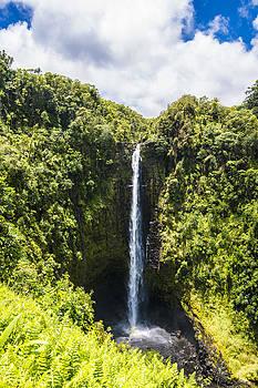Akaka Falls - Hawaii by Brandon McClintock