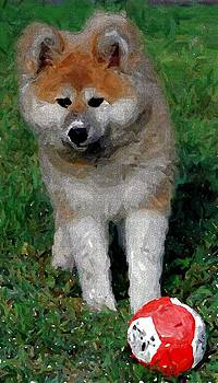 Akita Dog With Ball   by Olde Time  Mercantile