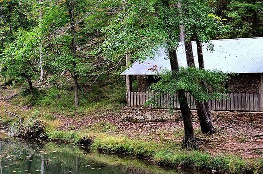 Maria Urso  - Alabama Creekside