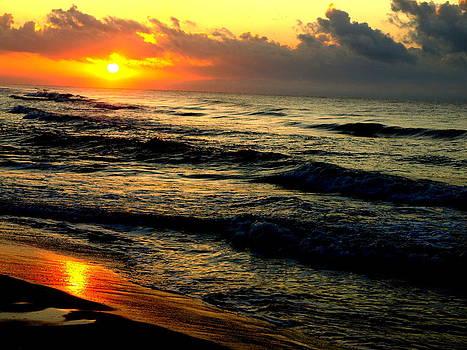 Alabama Sunrise by Denny Ragan