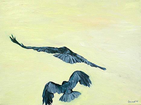 Alala in Flight by Sarah Soward