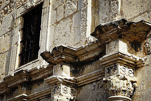 Alamo Detail 2 by Lincoln Rogers