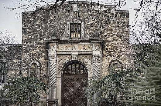 Alamo North End by Jeremy Linot