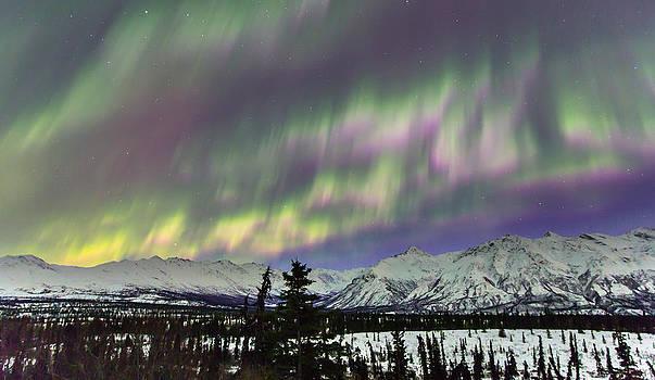 Alaska Aurora Over the Chugach Mountains by Sam Amato