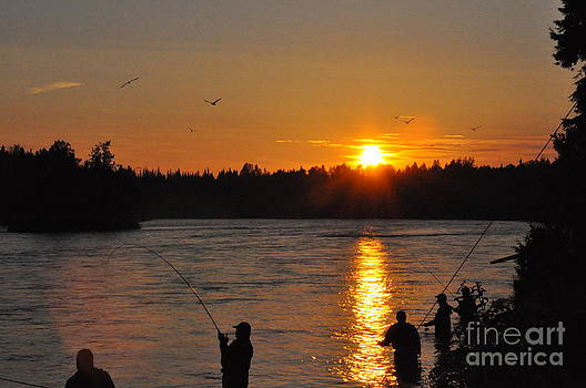Alaska Salmon Fishing by Tanya  Searcy