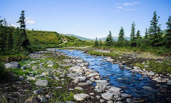 Alaska Stream by Jen Morrison