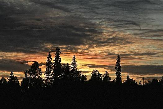 Alaska Summer Solstice Sunrise by Donna Quante