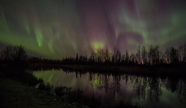 Alaskan Aurora Reflections by Sam Amato