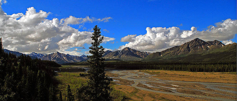 Alaskan Braided River Valley by Duane King