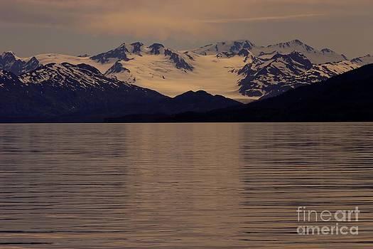 Sophie Vigneault - Alaskan light