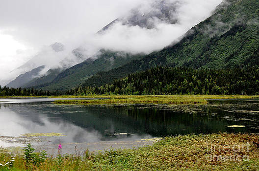 Alaskan Reflections by Tanya  Searcy