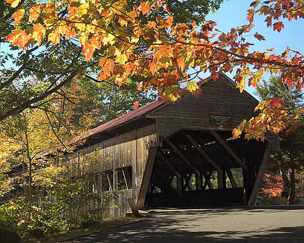 Albany Covered Bridge by Wayne Letsch
