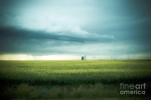 Alberta Praires by Annie Lemay