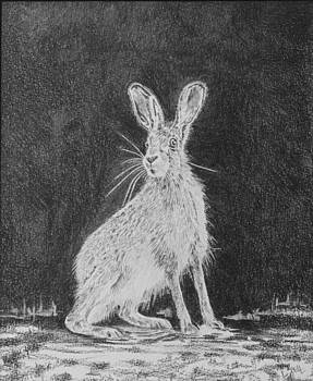 Alert Hare by Leonie Bell