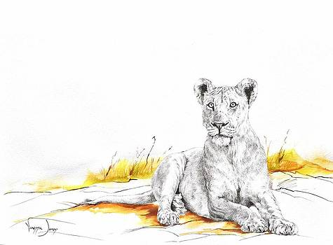 Alert lioness by Vanessa Lomas