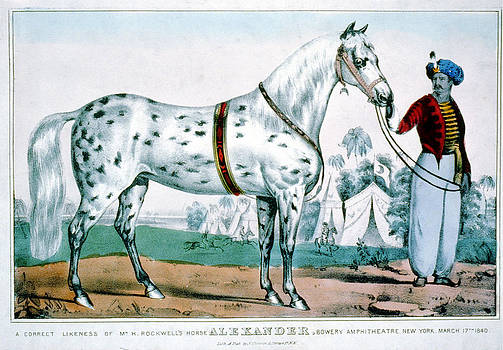 Alexander by Currier and Ives