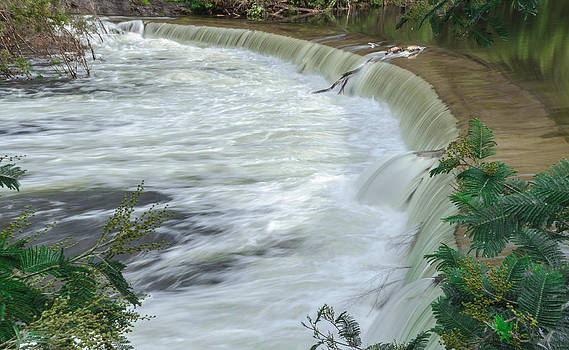Alexandre Martins - Alfusqueiro River I