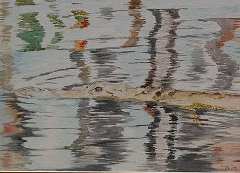 Ali the alligator by Teresa Smith