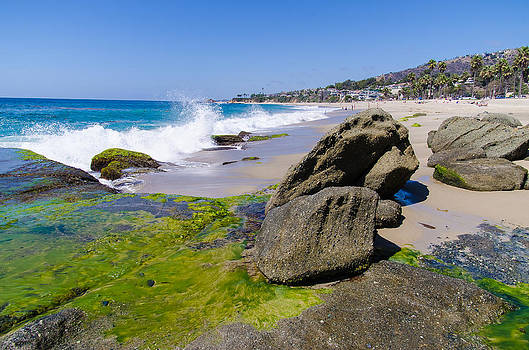 Robert VanDerWal - Aliso Creek Beach I