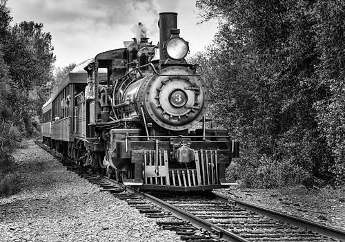 Kevin Reilly - All Aboard at Railtown State Park