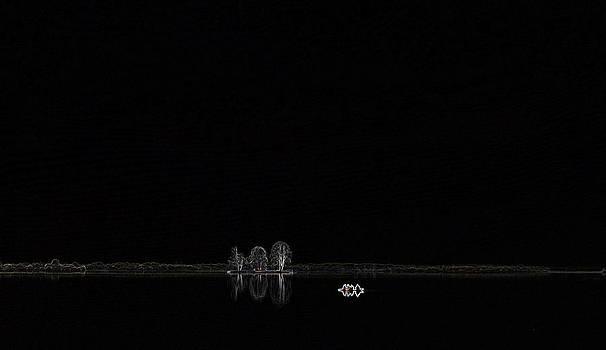 All Alone by Vijinder Singh