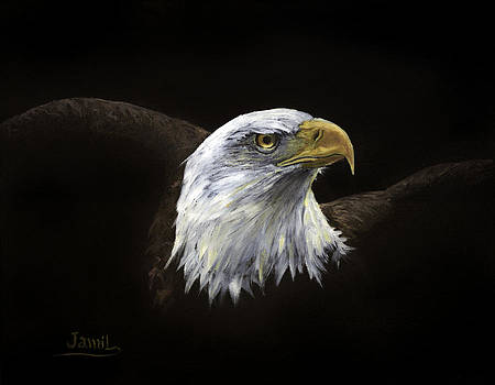 All American by Jamil Alkhoury