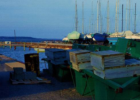 Rosemarie E Seppala - All Packed And Ready To Go...Lakeshore Loading Docks And Marina