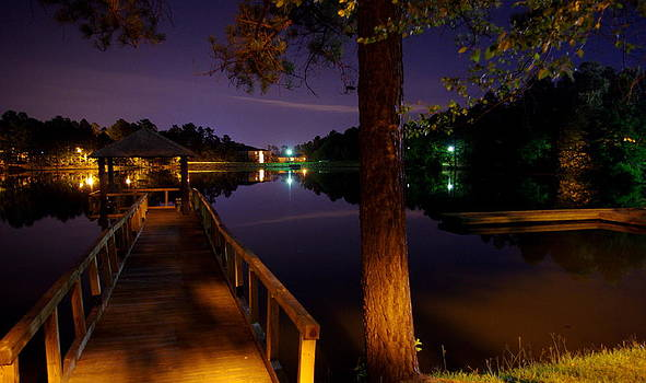 All Quiet at Lake Midnight  by Walter  Holland