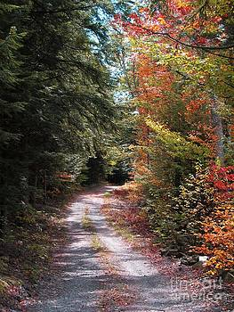 All Roads Lead Here by Linda Marcille