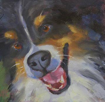 All Smiles by Elaine Hurst