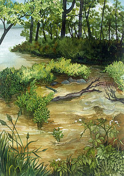 Allequash Creek on Trout Lake by Helen Klebesadel