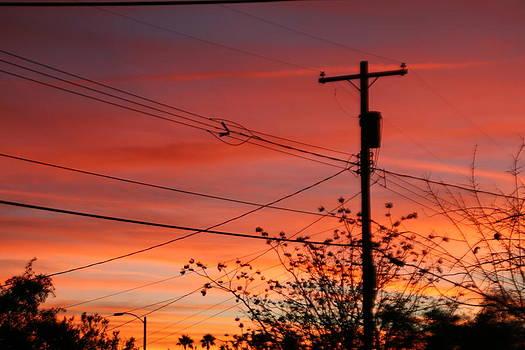 Alley sunset by David S Reynolds
