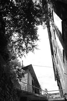 Nina Fosdick - Alley Up