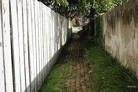 Alley Way by Carolyn Ricks